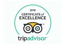 Dragon Raiders Trip Advisor